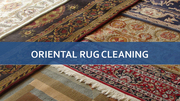 Trusted Rug Cleaning Experts in CA
